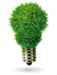 eco-friedly led light